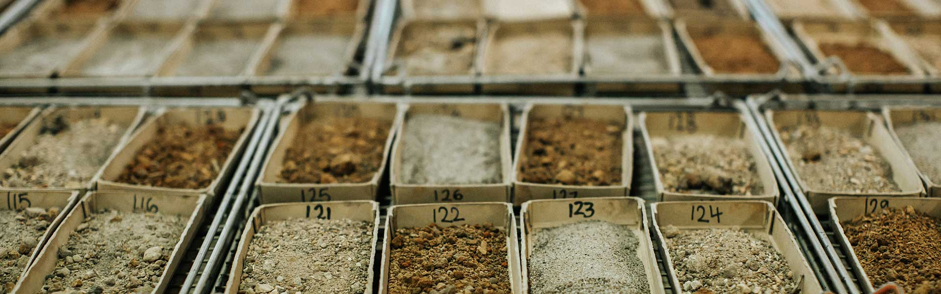 Soil being analysed at lab